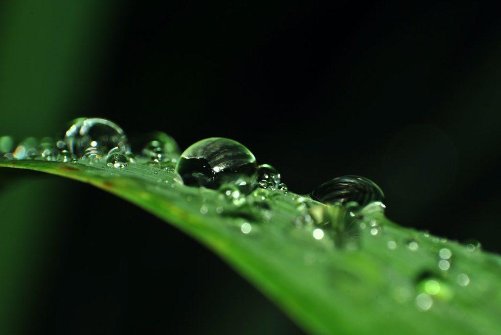 保湿と水分