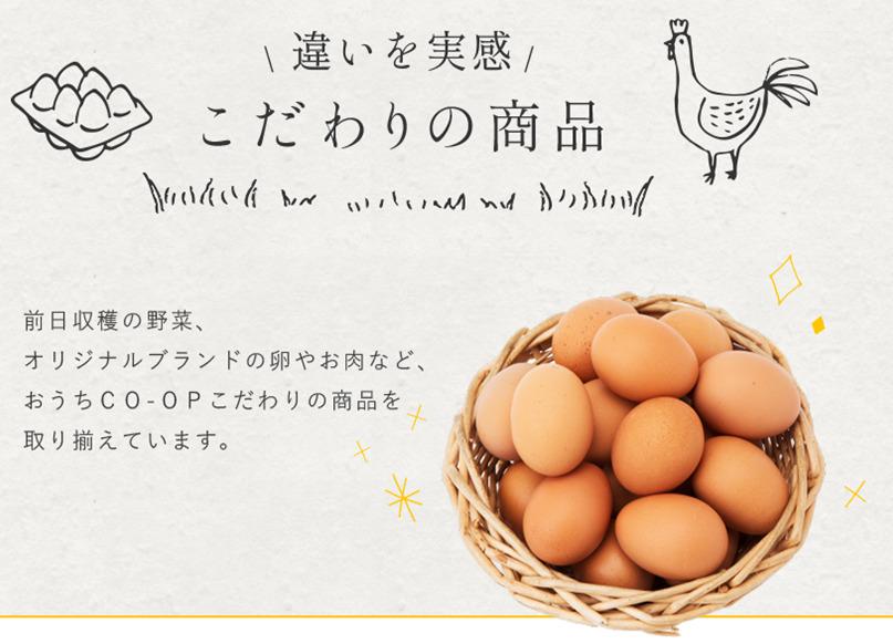 おうちコープ卵